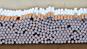 Цех производства сигарет табачной фабрики. Архивное фото