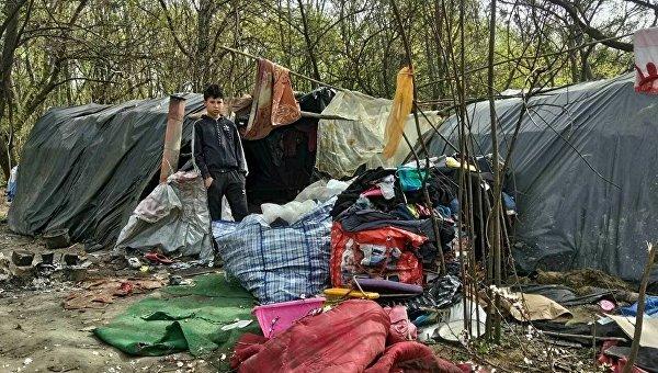 Члены С14 выгнали цыганский табор из Голосеевского парка в Киеве