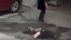 Собака упала на голову китаянке
