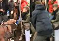 Атака питбуля на женщину в нью-йоркском метро. Видео