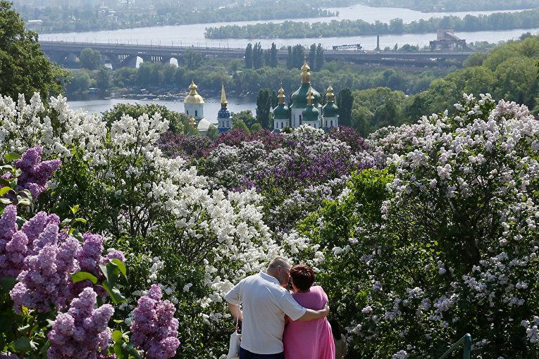 Цветение сирени в Киевском ботсаду