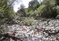 Мусорная река
