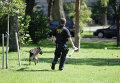 Американский полицейский со служебной собакой
