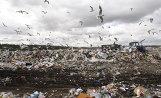 Работа предприятия по переработке бытовых отходов