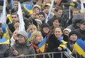 Акция Партии регионов - Строим Европу в Украине!