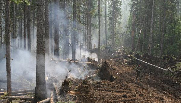 Cотрудники экстренных служб предупреждают овысокой пожарной опасности