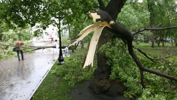 Последствия штормового ветра с дождем