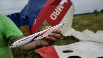 Поисковые работы на месте крушения Boeing 777 в Украине