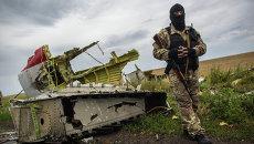 Поисковые работы на месте крушения Boeing 777 в Донецкой области