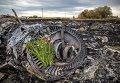 На месте крушения Boeing 777 в Украине. Архивное фото