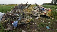 На месте крушения малайзийского лайнера Boeing 777 в районе Шахтерска. Архивное фото
