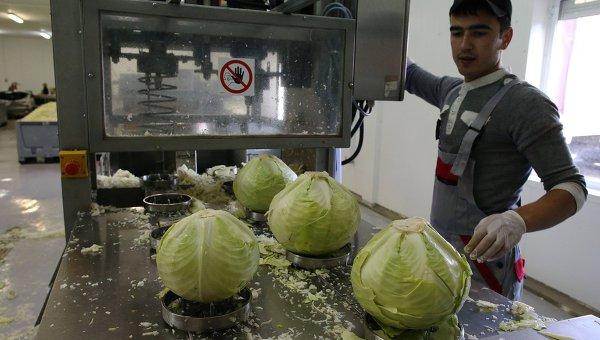 Производство овощных консервов. Архивное фото