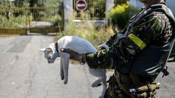 ВСУ на подступах к Луганску