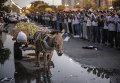 Сторонники свергнутого президента Мухаммеда Мурси у офиса республиканской гвардии