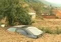 Наводнение в Сербии. Видео