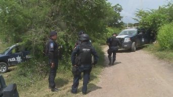 Четыре захоронения с телами были найдены в мексиканском городе Игуала. Видео