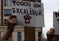 Эвтаназия собаки спровоцировала протесты в Мадриде