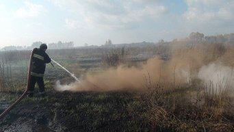 Пожар на торфяниках в Киевской области. Видео