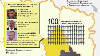 Выборы в ДНР и ЛНР. Инфографика