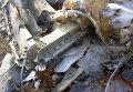 Расследование авиакатастрофы Boeing 777