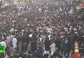 Шииты Ближнего и Среднего Востока отпраздновали день Ашура. Видео