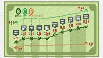 Динамика изменения курсов валют к гривне 2004 -2014. Инфографика