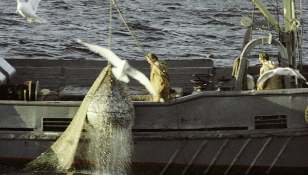 Рыбаки на траулере