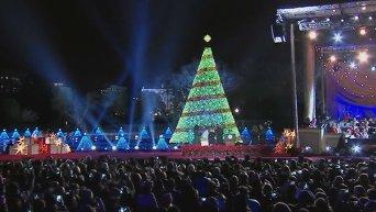 Обама зажег огни на национальной елке. Видео