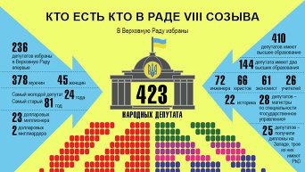 Портрет Верховной Рады восьмого созыва. Инфографика