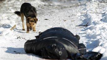 Жертва обстрелов в Донецке