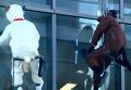 Как лошадь и овца мыли окна в Токио. Видео