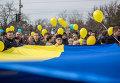 Участники демонстрации в поддержку единства Украины