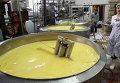 Сливочное масло. Архивное фото