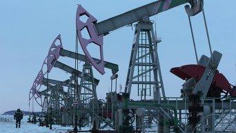 Территория нефтяной компании