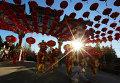 В юго-восточной Азии встречают Новый год по лунному календарю