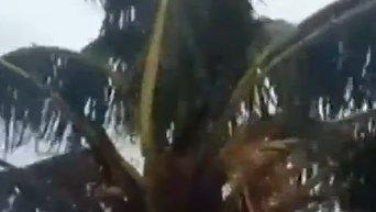 Тропический циклон Пэм