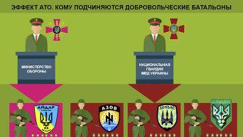 Кому подчиняются добровольческие батальоны