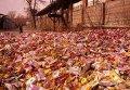 Выброшенные на улицу конфеты в Донецке