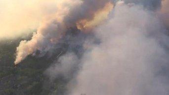 Пожар в Чернобыльской зоне. Видео