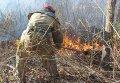 Тушение пожара в зоне отчуждения ЧАЭС
