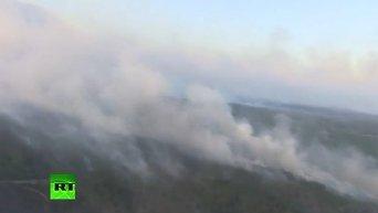 Эколог о пожаре в зоне отчуждения. Видео