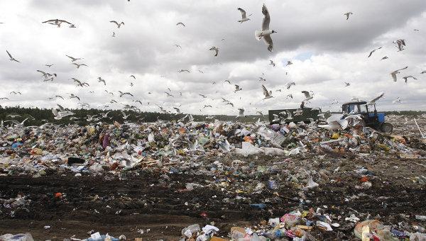 На франківському сміттєзвалищі відсортували вже понад 2 тисячі тон відходів (відеосюжет)