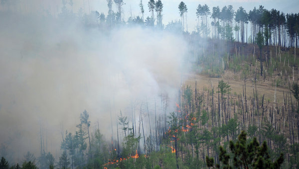 ЛЕсные пожары в России. Архивное фото
