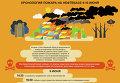 Хронология пожара на нефтебазе под Киевом. 9-10 июня. Инфографика
