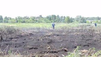 Пожар на торфяниках под Киевом