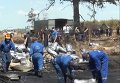 Работы по ликвидации последствий пожара на нефтебазе в Василькове