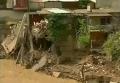 Наводнение в Тбилиси. Видео