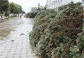 Ураган прошелся по центру Луганска