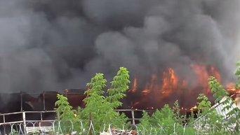 Пожар на СТО: сгорели автомобили. Видео