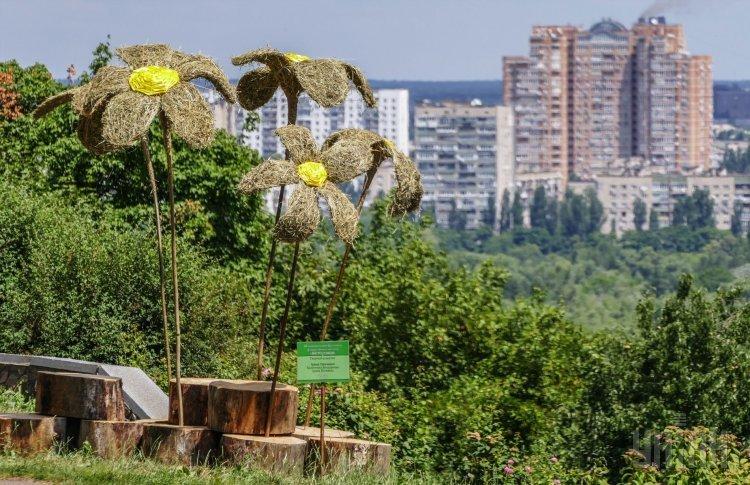 Фестиваль Город солнца в Киеве